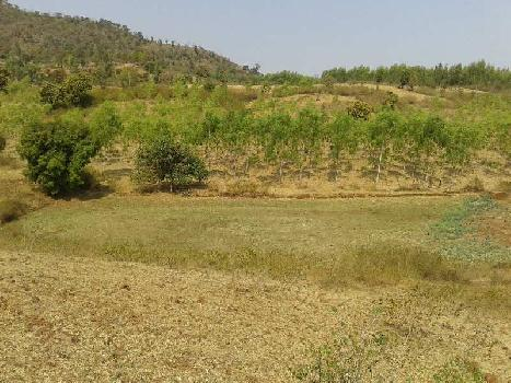 Agriculture Land For Sale In Rajendragram , Anuppur , Madhya Pradesh