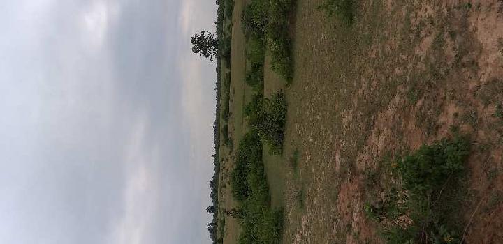 Agricalchar land