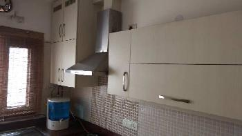 3 BHK Builder Floor for Sale in Greater Kailash I, Greater Kailash, Delhi