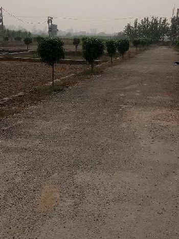 Freehold Plots available in a single gate colony.