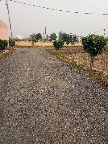 Freehold plots available at an attractive location.