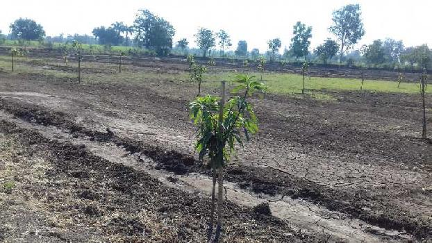 Agricultural/Farm Land for Sale in Degam, Navsari