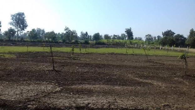 Agricultural/Farm Land for Sale in Degam, Navsari