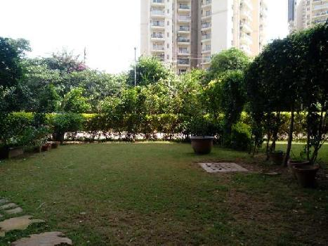 Residential Plot For Sale in Sector-52 Gurgaon