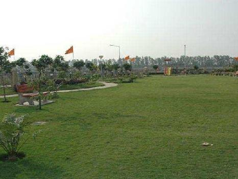 Residential Land for Sale in C Block Sushant Lok Phase - I, , Gurgaon, Haryana