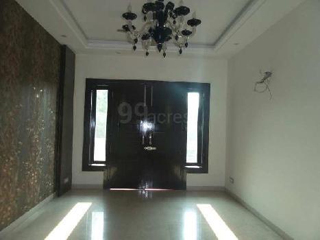 Floor for Sale