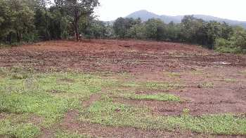 NA Plot for sale at Dodamarg on Goa ,Maharashtra Border