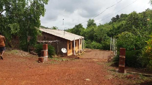Farm Land For Sale In Kuvale Village , Devgad, Sindhudurg