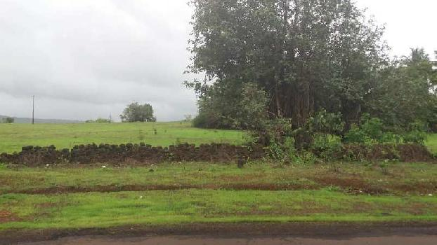 Farm Land For Sale In Kuvale Village , Devgad, Sindhudurg
