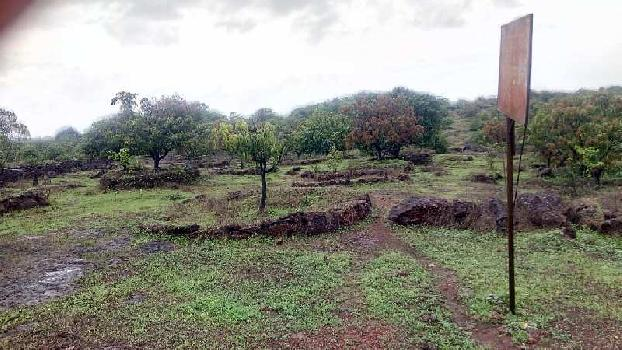Farm Land For Sale In Mahalunge, Devgad