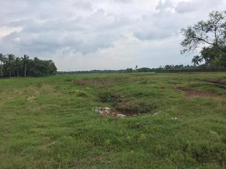 100 BIGHA READY LAND SALE AT BARUIPUR SADAR
