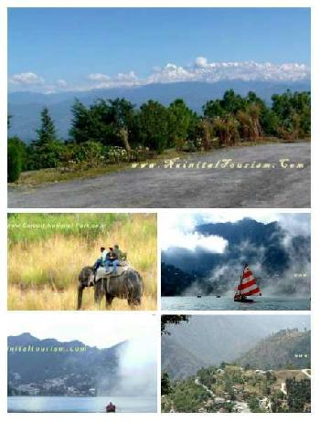 Jim Corbett Resorts Land For Sale In Ramnagar Nainital