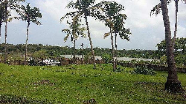 Residential Plot for Sale in Panjim