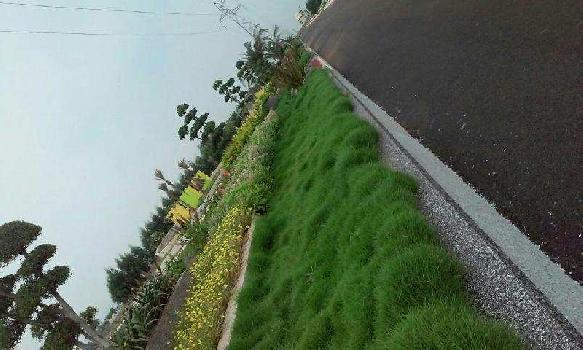 Residential Plot for Sale in Kanchikacherla, Vijayawada