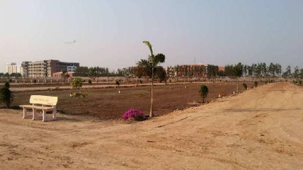 Very Lowest Price in the Sead Capital Of Amaravathi
