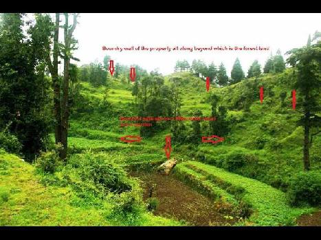 Commercial Land For Sale In  Dhanaulti Road, Mussoorie