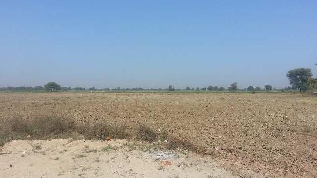 50 Bigha Industrial Land / Plot for Sale in Bavla, Ahmedabad