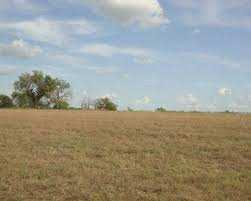 100 Ares Industrial Land / Plot for Sale in Kandla, Gandhidham