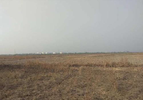 50 Acre Industrial Land / Plot for Sale in Savli, Vadodara
