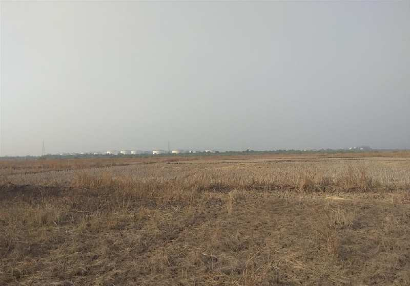 50 Acre Industrial Land / Plot for Sale in Savli, Vadodara