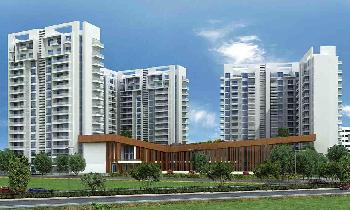 3 BHK Apartment for Sale in Sector 103, Gurgaon
