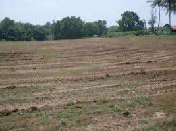 Residential Plot For Sale In Ansals Palam Vihar, Gurgaon