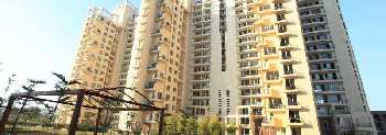 6 BHK Flat For Sale in Sector 54, Gurgaon,