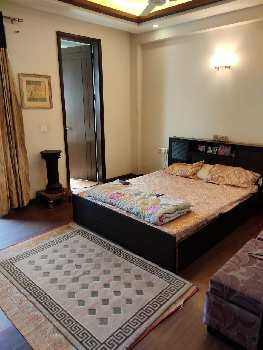 3 BHK Builder Floor for Sale in DLF Phase II, Gurgaon