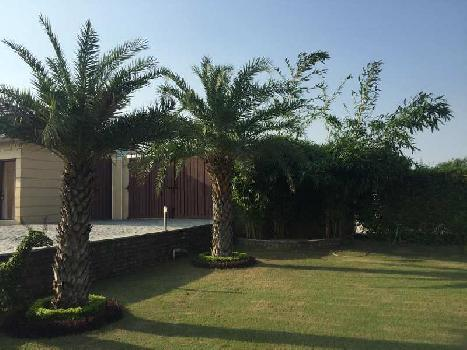 1 BHK Farm House for Sale in Pali Road, Faridabad
