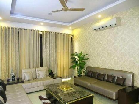 3 BHK Builder Floor for Sale in Sector 11, Faridabad