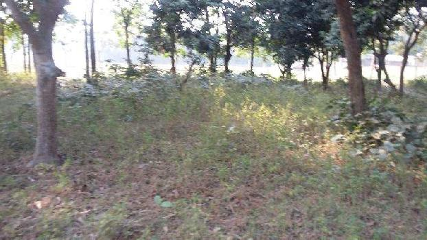 Residential Plot for Sale in Purnia