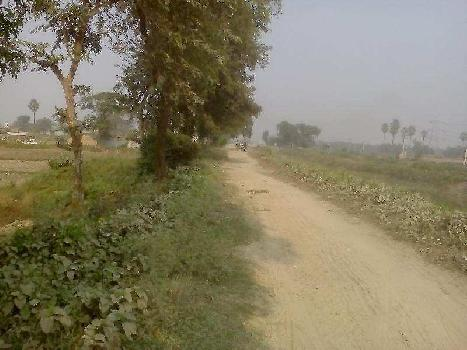 Residential Plot for Sale in Tilkamanjhi,Bhagalpur
