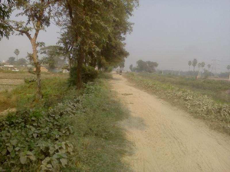 Residential Plot for Sale in Tilkamanjhi,Bhagalpur