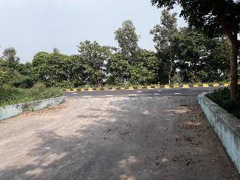 NH 31 Araria on highway