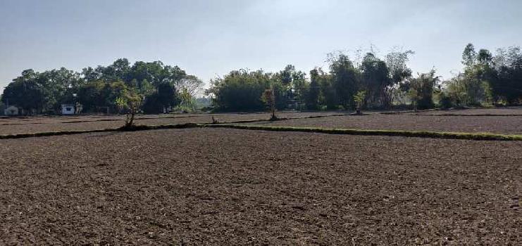 10+ BHK Farm House for Sale in Siliguri