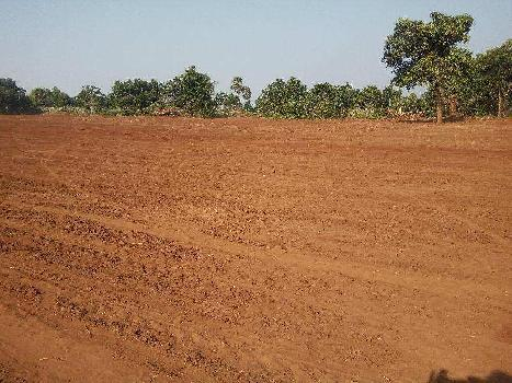 Residential Plot for Sale in Chhatrapur, Ganjam