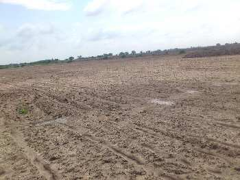Commercial Land Land for Sale in City Center, Gwalior