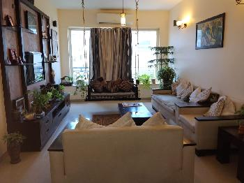 3 BHK Flats & Apartments for Sale in Mohammadwadi, Pune