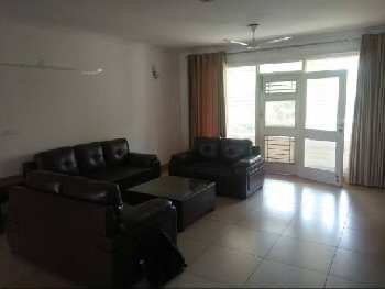 3 BHK Apartment For Sale in Koregaon Park, Pune
