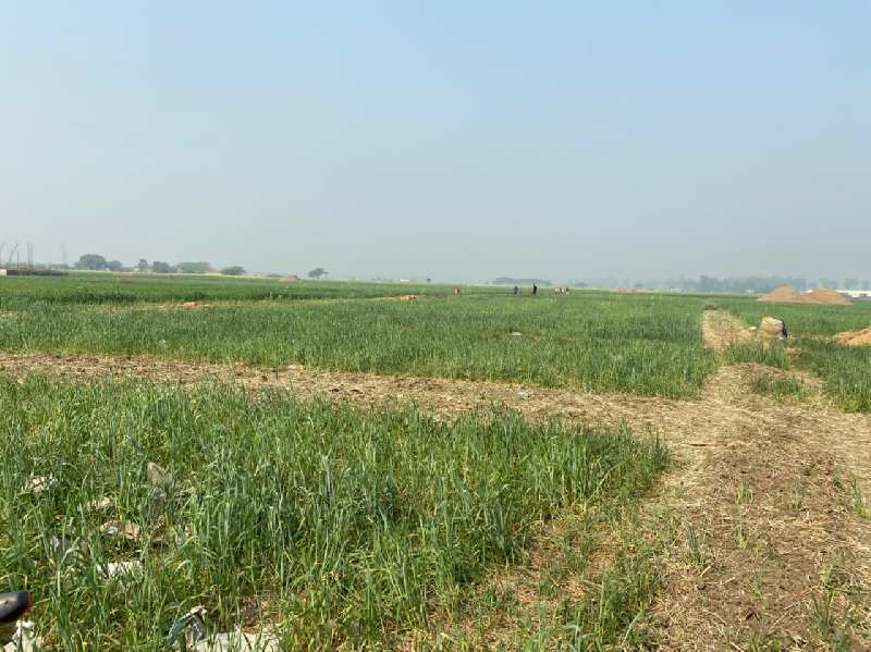 1000 Sq.ft. Residential Plot for Sale in Jasra, Allahabad