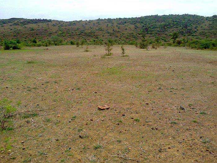 Residential Land for Sale in Parley Point, Surat