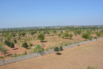 Agricultural/Farm Land for Sale in Hyderabad