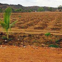 Farm Land for Sale At Hyderabad West