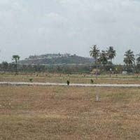 Buy Residential Plot in Mahbubnagar