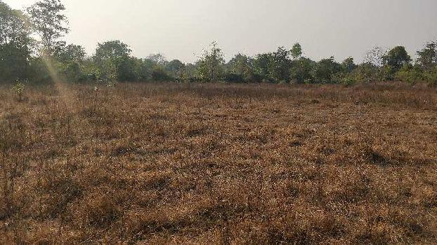Agricultural/Farm Land for Sale in Raigad