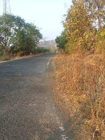 Agricultural/Farm Land for Sale in Shrivardhan, Raigad