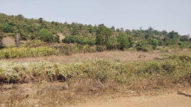 Agricultural/Farm Land for Sale in Roha Ashtami, Raigad
