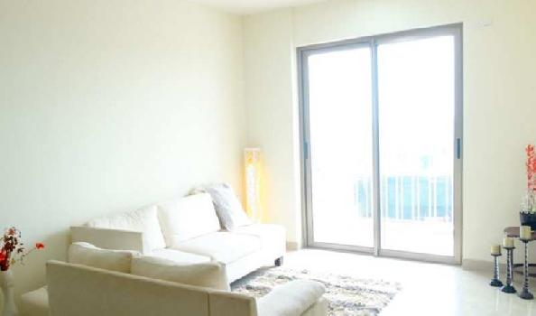 1 BHK Apartment For Sale In Tata Ariana