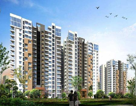 3 BHK Flats & Apartments for Sale in Khandagiri, Bhubaneswar