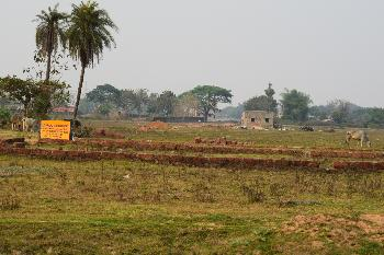 Property near trisulia